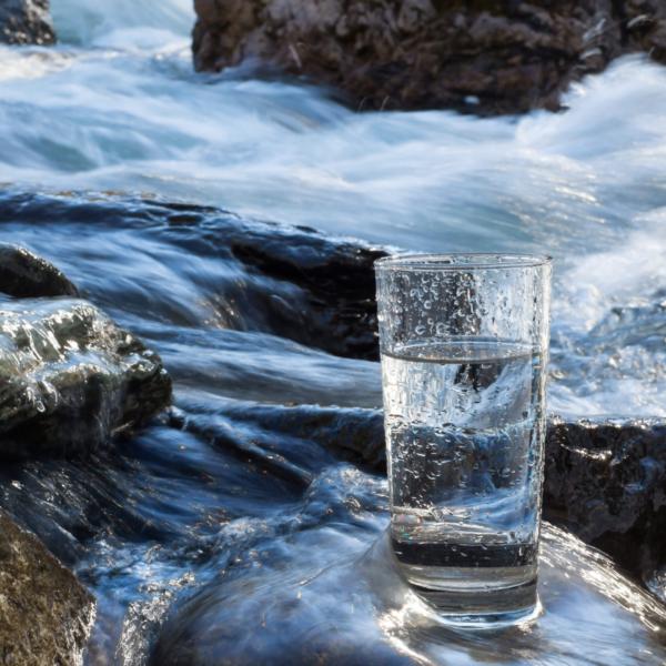 ett glas med vatten står på en sten vid en fors