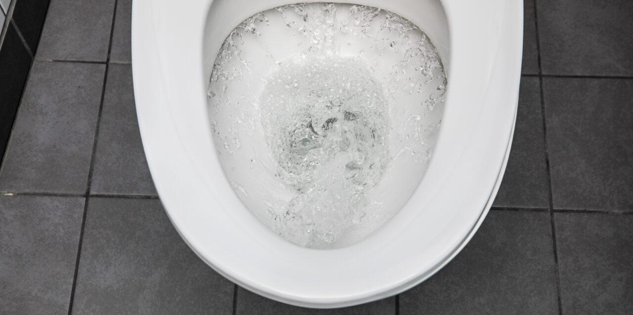 En spolande toalett